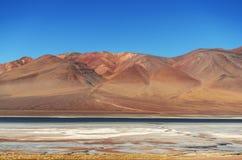 Paso de jama, peperoncino rosso dell'argentina, desierto de atacama Fotografia Stock Libera da Diritti