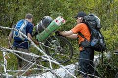 Paso de los turistas del ciclo a través del árbol caído-abajo Imagenes de archivo