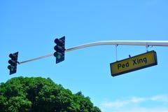 Paso de peatones con la luz de la parada Fotografía de archivo