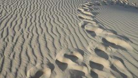 Paso de progresión en desierto Imágenes de archivo libres de regalías