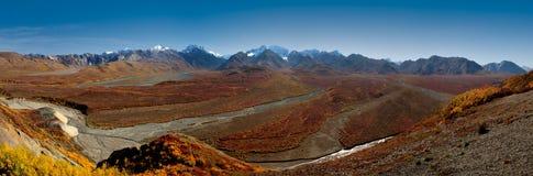 Paso policromo del parque nacional de Denali Foto de archivo libre de regalías