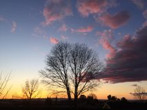 Paso Robles fall sunset with trees large passing storm clouds. Beautiful lucid colorful sunset in Paso Robles, California showcasing clouds illuminated by the royalty free stock photography