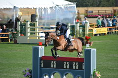 Paso Robles Horse Park Jumping Grand Prix. Central Coast of California hosts Grand Prix jumpers at the Paso Robles Horse Park Stock Image