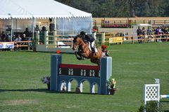 Paso Robles Horse Park Jumping Grand Prix. Central Coast of California hosts Grand Prix jumpers at the Paso Robles Horse Park Royalty Free Stock Photo