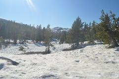 Paso totalmente Nevado del Sonora con algunas vistas impresionantes del parque nacional de Yosemite Días de fiesta del viaje de l Imágenes de archivo libres de regalías