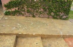 Pasos concretos y manera anaranjados brillantes de la rampa para la silla de ruedas de la ayuda Foto de archivo libre de regalías