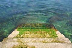 Pasos cubiertos de musgo que llevan abajo en el agua Fotografía de archivo libre de regalías
