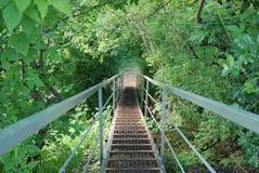 Pasos de la escalera del hierro en el bosque Imagen de archivo