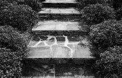 Pasos de la roca Imagen de archivo libre de regalías