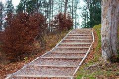 Pasos de madera del bosque en las hojas de otoño Foto de archivo libre de regalías