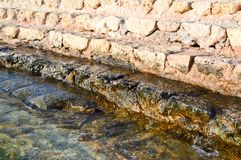 Pasos de piedra amarillos antiguos de los guijarros cubiertos con fango verde y fango, pendiente en el mar, un lago, un océano y  Foto de archivo libre de regalías