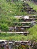 Pasos de piedra, demasiado grandes para su edad con las malas hierbas Imágenes de archivo libres de regalías