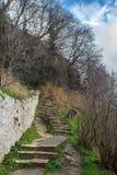 Pasos de piedra en el medio de un bosque pintoresco Fotos de archivo libres de regalías