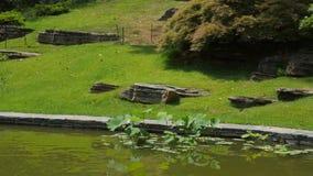 Pasos de piedra en jardín Fotografía de archivo