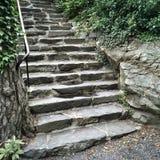 Pasos de piedra en jardín del verano Imágenes de archivo libres de regalías