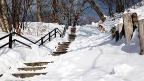 Pasos de piedra en las orillas del lago Toya en el invierno, Hokkaido Jap?n fotografía de archivo libre de regalías