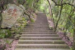 Pasos de piedra en rey Scenic Area China del árbol Imagen de archivo