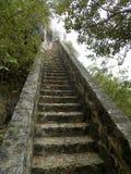 1000 pasos de progresión Bonaire Fotos de archivo