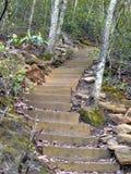Pasos de progresión de la montaña Imagen de archivo