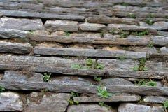Pasos de progresión de piedra. Foto de archivo