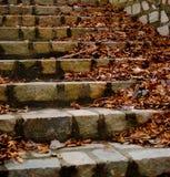 Pasos de progresión de piedra Fotografía de archivo