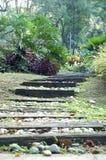 Pasos de progresión del jardín Foto de archivo