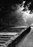 Pasos de progresión del jardín Fotografía de archivo