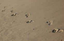 Pasos de progresión del pie Imagen de archivo libre de regalías