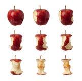 Pasos de progresión para comer una manzana Imagen de archivo libre de regalías
