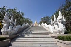 Pasos de progresión y Naga del templo fotos de archivo libres de regalías