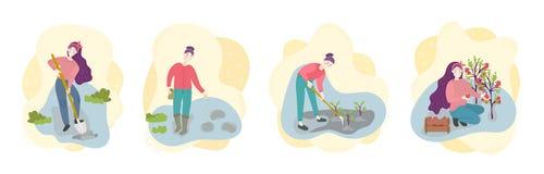 Pasos de verduras crecientes orgánicas en campo El almácigo del spug de Weman, siembra, cava, recoge Sistema de la escena del tra libre illustration