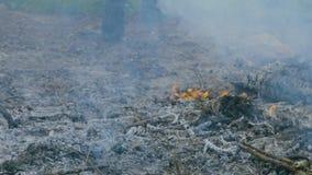 Pasos del militar entre el campo ardiente almacen de metraje de vídeo