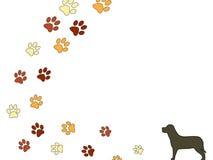Pasos del perro Imagen de archivo