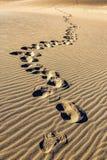 Pasos del pie en la arena Foto de archivo