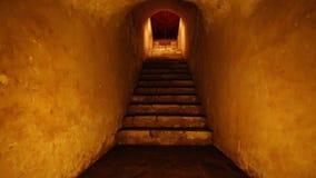 Pasos dentro de una cueva almacen de video