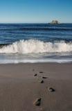 Pasos en arena de mar Fotos de archivo