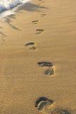 Pasos en la arena Fotografía de archivo libre de regalías