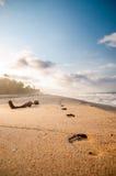 Pasos en la playa por Tayrona en Colombia Foto de archivo libre de regalías