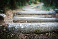 Pasos que llevan hacia arriba en Lion Rock Country Park, Hong Kong Foto de archivo libre de regalías