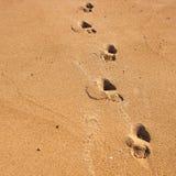 Pasos solos de la playa Imagen de archivo libre de regalías