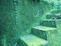 Pasos verdes Imágenes de archivo libres de regalías