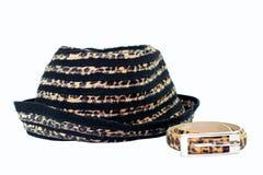 pasowy kapeluszowy lampart Zdjęcia Stock