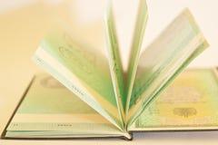 Paspoort - Visum royalty-vrije stock afbeeldingen