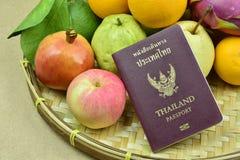 Pasport und Frucht lizenzfreie stockbilder
