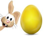 Pasqua Bunny Easter Eggs Festive Elements Fotografia Stock Libera da Diritti