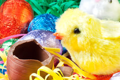 Pasqua Chick Eats Egg Fotografia Stock