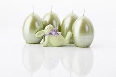 Pasqua-coniglietto Fotografia Stock