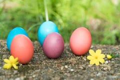 Pasqua domenica, pasqua felice, uova di Pasqua variopinte cerca gli ambiti di provenienza di concetto di pasqua delle decorazioni Fotografia Stock Libera da Diritti