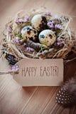 Pasqua felice - cartolina d'auguri Fotografia Stock Libera da Diritti