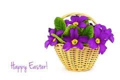 Pasqua felice: Fiori nel canestro Immagine Stock
